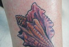 Thousands of ideas about conch shell tattoos on pinterest for Tattoo shops cape coral