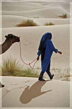 Walking through the desert with his camel in Erg Chebbi | Morocco