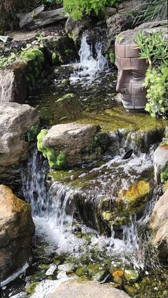 Small Backyard Ponds, Backyard Stream, Garden Stream, Backyard Waterfalls, Backyard Water Feature, Waterfall Landscaping, Garden Waterfall, Pond Landscaping, Garden Pond Design