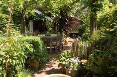 wilde tuin Back Gardens, Small Gardens, Outdoor Gardens, Garden Yard Ideas, Garden Projects, Amazing Gardens, Beautiful Gardens, Pergola Patio, Backyard