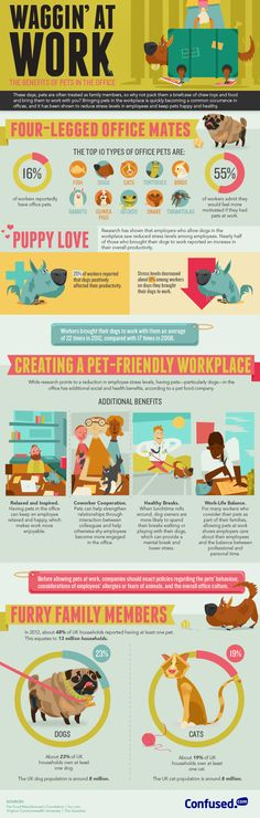 Why You Really Should Bring Your Pet to the Office | The Muse (I LOVE having my pets nearby!)