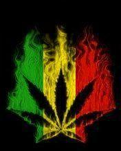 Nobody like bob marley on pinterest bob marley rasta colors and reggae music - Reggae girl wallpaper ...