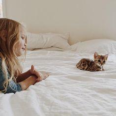 oh hi, kitty//