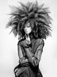 Sideshow Bob hair