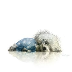 Wiebke Rauers Illustration~ the tank is empty let it dry im suffering a passion ending so the world Cute Animal Illustration, Cute Animal Drawings, Art And Illustration, Character Illustration, Cute Drawings, Funny Dog Faces, Funny Dogs, Regard Animal, Photo Images