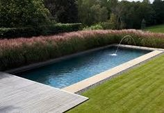 The water feature at one end of the surrey outdoor swimming pool provides a focal point and the planting around the pool allows for natural screening. Outdoor Swimming Pool, Swimming Pools, Lap Pools, Garden Pool, Garden Landscaping, Rectangular Pool, View Source, Pool Designs, Surrey