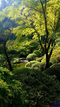Photos from our visit of the Portland Japanese Garden and a few tips and general impressions. I hope these help you plan your own visit. #japanesegardening
