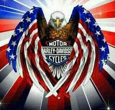 HARLEY DAVIDSON, in honor of my father and all the great men and women who have served our country to keep us Safe in an uncertain world. I salute you all, each and every one of you. The Officers Daughter☆☆☆