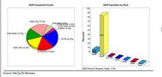 chart income pie