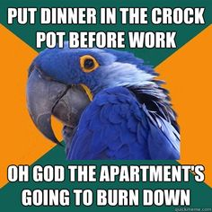 This was me this morning when I put off a slow cooker meal until tomorrow when I wouldn't be going anywhere. I am the paranoid parrot :)