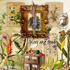 Spice and Herbs by Krysty Scrap Designs
