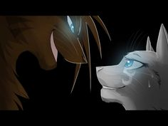 Hawkfrost and Ivypool