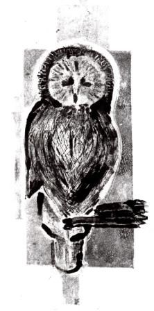 Owl Monotype by Max Frances