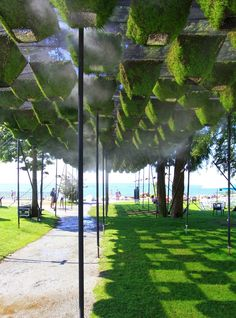 Move Over, Green Walls: Living Canopy Comes to West Vancouver | DesignDaily | Designs Everyday!