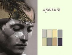 APERTURE: Names like color names such as Ashley, cloudburst are bandied about; surfaces visit bi-polar extremes from grills and wires, to the soft plush textures of mohair and velvets – grayish tones make monochromatic statements. Pantone Color Trends for Fall-Winter 2012 - 2013 http://redoitdesign.wordpress.com/2011/06/23/new-pantone-color-trends-for-fallwinter-2012-2013/
