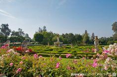 Dream garden location for weddings and photography.  #gardenweddings #californiaweddings #weddingvenues #pasadenaprincess #privateweddings www.pasadenprincess.com