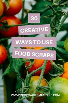 Did you know that approximately of all food grown, processed, and transported in the US will never be eaten? Read on to learn how you can cut down on your personal food waste and discover the many miraculous ways you can use scraps too! Sustainable Food, Sustainable Living, Sustainable Gardening, No Waste, Reduce Waste, Waste Reduction, Bokashi, Help The Environment, Good To Know