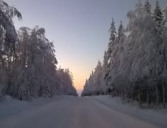 Driving in January in the direction of lake Kitka, Finland.