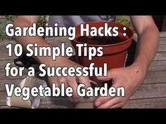 Gardening Hacks - 10 Simple Tips for a Successful Vegetable Garden - YouTube