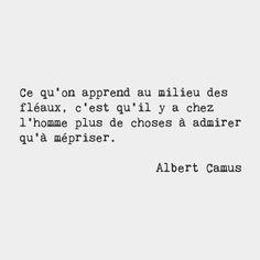 Albert Camus                                                       …