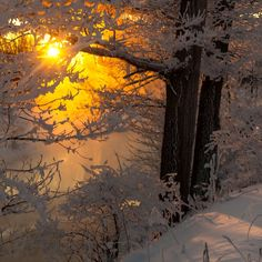 There was a heavy frost ... by Vladimir Mironov
