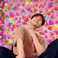 Blackpink Memes, Exo Memes, Cute Memes, Baekhyun, Bee Meme, Sungjae And Joy, Exo Stickers, Song Hye Kyo, Kpop Exo