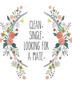 Laundry Sign - Clean, Single, Looking for a Mate - The Resplendent