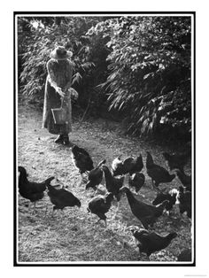 An Older Woman in a Long Dress and Wide-Brimmed Hat Throws Handfuls of Chicken Feed Giclee Print