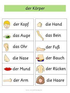 German Word Walls – Basic Vocabulary Body Parts Cards Study German, Learn German, German English, Learn French, German Grammar, German Words, German Resources, Deutsch Language, Germany Language