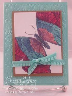 Stampin Up Swallowtail Card
