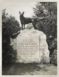 War dogs memorial sculpture dedicated World Hartsdale Canine Cemetery NY 1936 Military Working Dogs, Military Dogs, Pet Cemetery, Dog Day Afternoon, Vietnam War Photos, War Dogs, Dog Memorial, Pet Memorials, Service Dogs