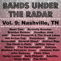 Bands Under the Radar, Vol. 9: Nashville, TN by BUTR Records on SoundCloud
