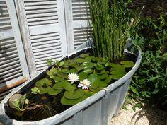 Avec la petite baignoire en zinc... de beaux nympheas, une prele géante. Et voilà ! Rock Wall Gardens, Garden, Garden Nest, Small Water Gardens, Garden Pond Design, Backyard Garden, Outdoor Gardens Landscaping, Fish Ponds Backyard, Garden Painting