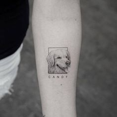 13 of the Cutest Animal Tattoos You Have to See - Tattoo ideas - Animals Small Dog Tattoos, Cute Animal Tattoos, Mini Tattoos, Tattoos For Women Small, Body Art Tattoos, Tribal Tattoos, Tattoos For Guys, Pet Tattoos, Cutest Tattoos
