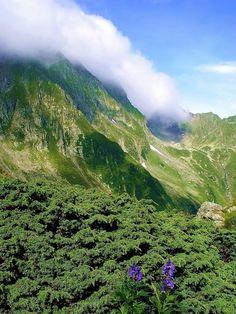Sambata Fagaras mountains Carpathians Romania, www.romaniasfriends.com