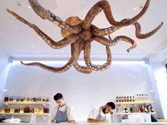 Melhores restaurantes em Lisboa – dos clássicos aos recém-chegados