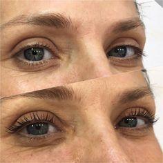 Eyelashes, Eyebrows, Volume Lash Extensions, Eyelash Lift, Volume Lashes, Tech, Lashes, Eye Brows, Brows