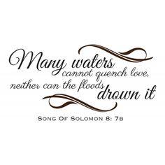 song of solomon 8   Song of Solomon 8:7 scripture vinyl wall art   Divine Walls