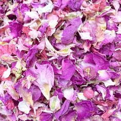 Natural and dye-free petal mixes. 1 litre will give handfuls. Known as the luxury petal on the market. A smaller petal, choose from 7 colours or mix and match your favourites. Rose Petal Confetti, Paper Confetti, Wedding Confetti, Confetti Ideas, Biodegradable Confetti, Biodegradable Products, Wedding Schedule, Dried Rose Petals, Delphinium