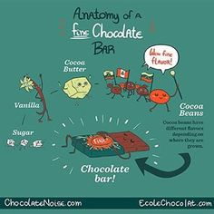 """Here is the newest chocolate infographic in our series with Megan Giller @chocolatenoise """"Anatomy of a Fine Chocolate Bar""""! Did you miss the first two illustrations in the series? Check out our latest post on our blog bean2bonbon (find it on our website, link in profile)!"""