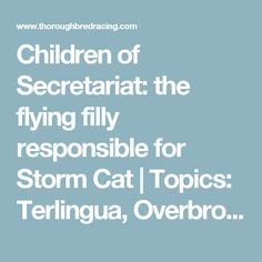 Children of Secretariat: the flying filly responsible for Storm Cat | Topics: Terlingua, Overbrook Farm, Secretariat, Storm Cat, D. Wayne Lukas | Thoroughbred Racing Commentary