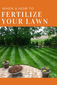 31 Best Lawn Care Tips images in 2019 | Lawn care tips, Lawn