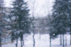 Falling snow outdoors nature winter trees animated snow gif