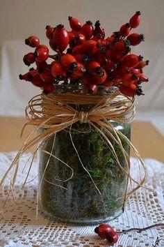 Z jejich plodů uvaříte nejen čaj, ale vytvoříte i originální dekoraci do bytu. Fall Crafts, Diy And Crafts, Christmas Crafts, Deco Floral, Christmas Makes, Fall Diy, Autumn Inspiration, My New Room, Xmas Decorations
