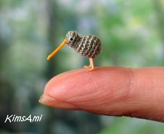 Mini Kiwi Bird - Brown. Miniature amigurumi tiny Kiwi made to order - handmade. Comes with FREE handmade display box.