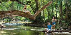 LISA! Sprachreisen - Englisch in Australien /  Cairns / Regenwald- und Strandparadies