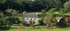 The Barley Crush & Treveddoe, Warleggan, Bodmin, Cornwall, UK, England. Holiday. Travel. Accommodation. #AroundAboutBritain. Self Catering. Pets Welcome. Coast Nearby.