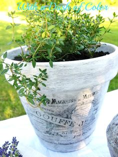 """Decoupaged """"French"""" Pots - coat of gesso, a bit of gray paint, mod podge image (image from the Graphics Fairy) - beauties!"""