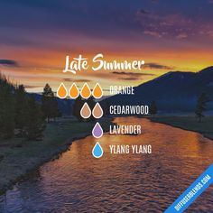 Late Summer - Essential Oil Diffuser Blend