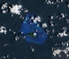 Corales del mundo en peligro — Noticias de la Ciencia y la Tecnología (Amazings®  / NCYT®)